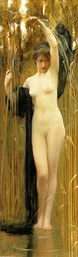 De desnudos y metamorfosis